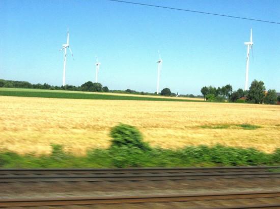 Windräder im Kornfeld_new bb
